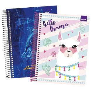 Cadernos 200 folhas