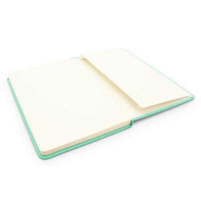 Caderno anotações 13x21cm com pauta 80 fls verde pastel Spiral PT 1 UN