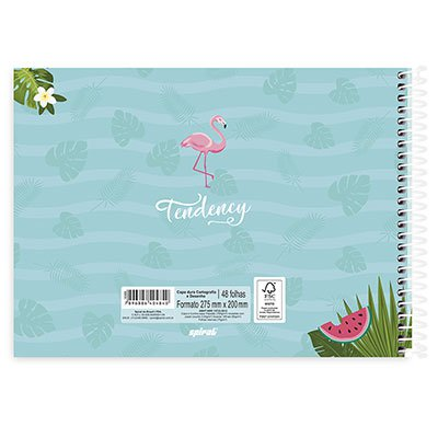 Caderno cartografia 48fls capa dura Flamingo 20937 Spiral Ten PT 1 UN