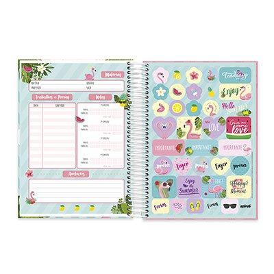 Caderno Universitário capa dura 20x1 400fl Flamingo 20691 Spiral Ten PT 1 UN