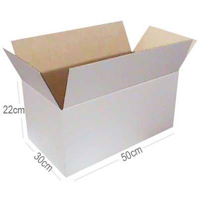 Caixa papelão transporte/mudança C50xL30xA22 branca Westrock PT 1 UN
