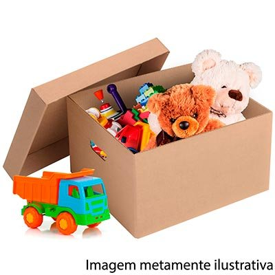 Caixa papelão multiuso C41,9xL35,5xA24,6 c/tampa Westrock PT 1 UN
