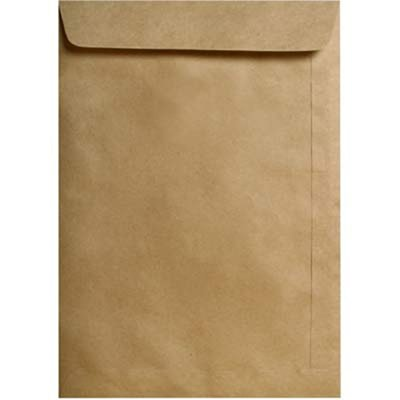 Envelope saco kraft natural 80g 250x353 42skn Celucat CX 250 UN