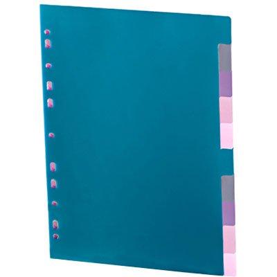 Divisória para Fichário A4 2 ou 4 Argolas com 10 projeções coloridas DV10CL Plascony PT 1 UN