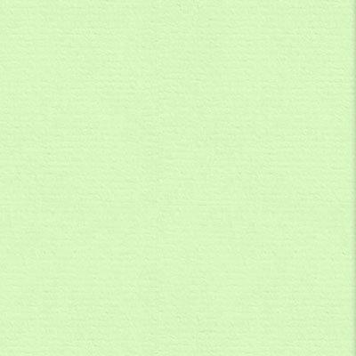 Papel 180g 210x297 vergê verde claro Spiral - PT 50 FL