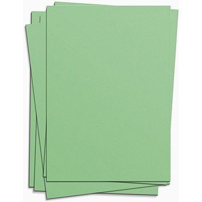 Cartolina 150g 50x66 verde card set Spiral PT 10 UN