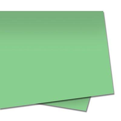 Papel color set 48x66 110g verde bandeira Moopel PT 10 FL