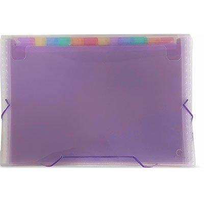 Pasta Sanfonada Plástica A4 Transparente com 12 divisórias Coloridas SME12C Plascony PT 1 UN
