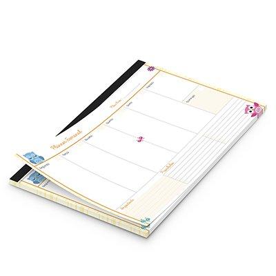 Planner semanal 214x280mm c/ 60 fls Corujinhas 20129 Spiral Cor PT 1 UN