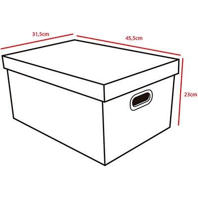 Caixa organizadora pratika 45,5x31,8x23 Boxgraphia CX 1 UN