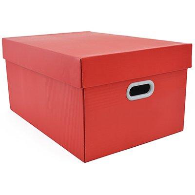 Caixa organizadora pratika coral 45,5x31,5x23 Boxgraphia CX 1 UN